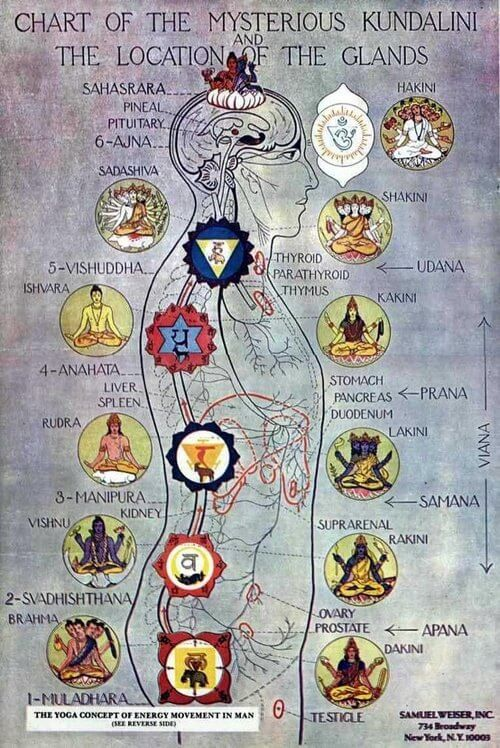 Workshop 7 chakra's en 7 herbergen